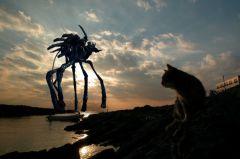 蟹と夕日とアイルーと