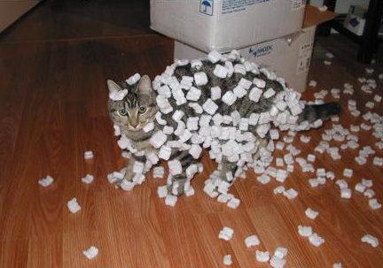 デコレーション猫