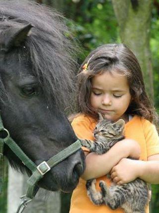 馬と猫と少女